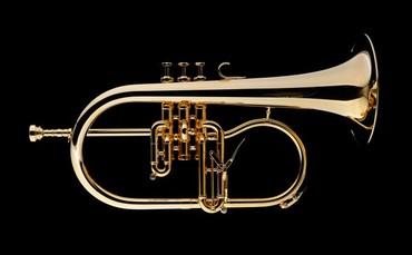 James Morrison Meister Flugelhorn-Gold Plated