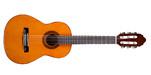 Classical Guitar - Valencia 1/4