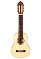 "Classical Guitar - Valencia Traveller 29""*"