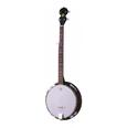 Banjo-Budget 5 String*